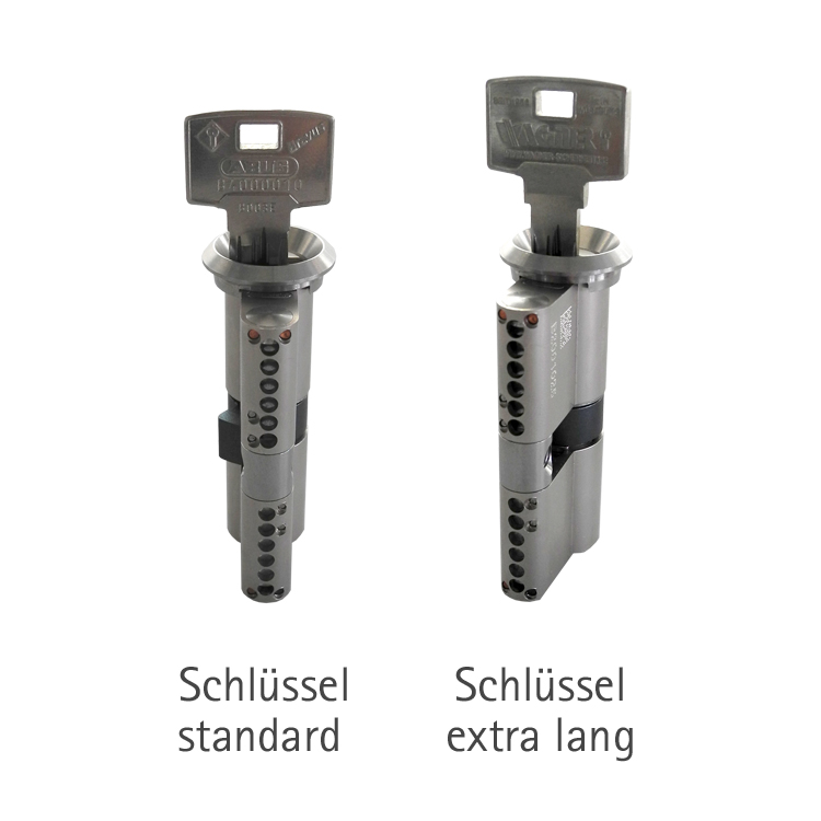 2x Zylinderschloss gleichschlie/ßend 60 mm PZ 30//30 inkl.10 Schl/üssel